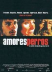 2000 Amores Perros Movie Film Cinema Poster Art