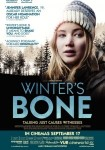 2010 Winter's Bone Movie Film Cinema Poster Art